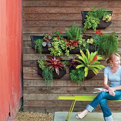 Ξύλινος τοίχος με φυτά.