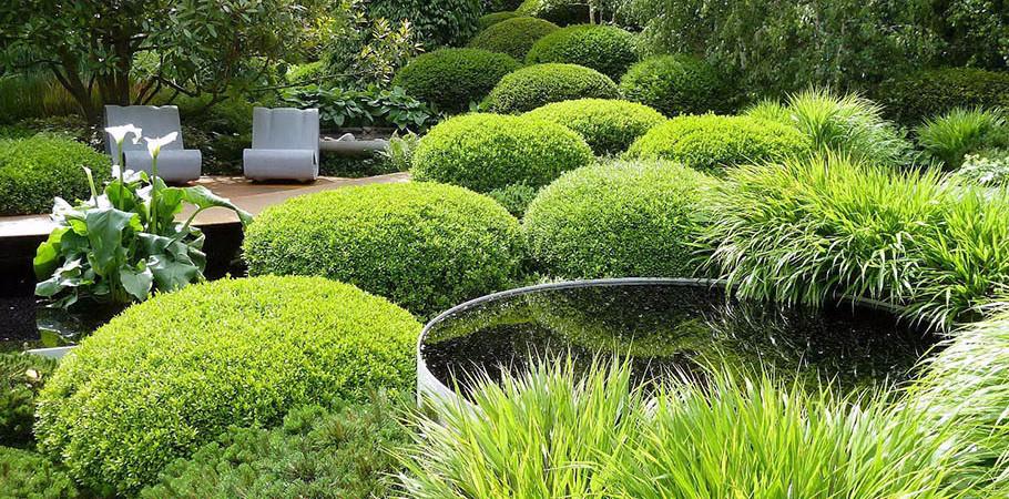 Κήπος.